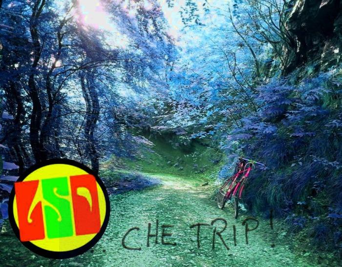 chetrip2