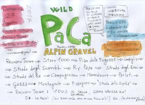 wild PaCa alpingravel